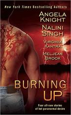 Burning Up -- Angela Knight
